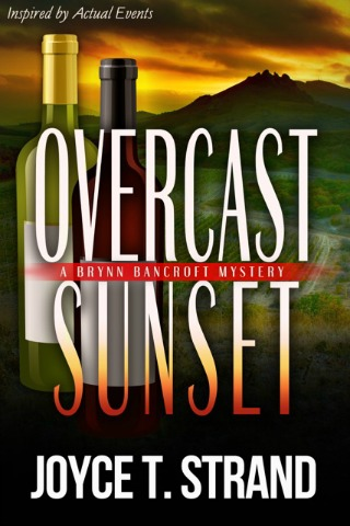 Overcast Sunset by Joyce T Strand {Book Review}