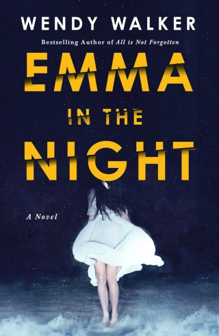 Emma in the Night by Wendy Walker {Book Review}